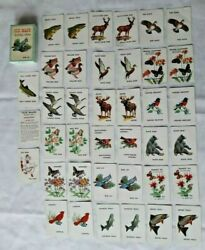 Vintage Old Maid Wildlife Edition Animals Playing Cards Game With Original Box