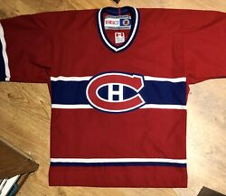 Montreal Canadiens 60 Jose Theodore Nhl Ccm Kids Youth Jersey - Size L/xl