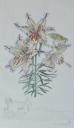 Salvador Dali Erotic Lily 1972 Hand Signed Surrealistic Flowers Etching