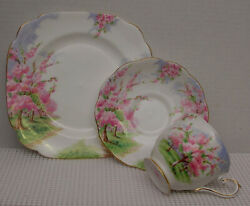Lovely Blossom Time Trio Footed Tea Cup, Saucer And 7.5 Salad Plate Royal Albert