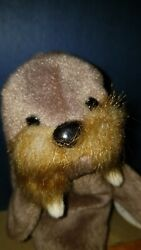 Vintage Retired Ty Beanie Babies Jolly The Walrus 1996 Rare Stuffed Animal Toy