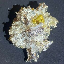 Historic California Coloma 26.8g Gold/silver Crystallize Nuggettree Of Life