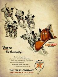 1951 Texaco Fire Chief Dalmatian Dogs Heavy Duty Usa Made Metal Advertising Sign