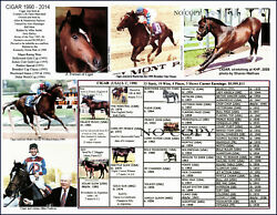 Race Horse Cigar Won 16 Races In A Row Picture Pedigree Jockey Jerry Bailey