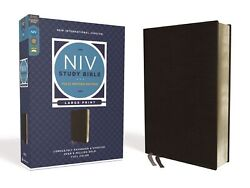 Niv Study Bible/large Print Fully Revised Edition