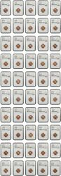 Roll Of 1955 1c Ngc Ms65 Rd 50 Coins Total - Lincoln Cent