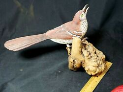 Rare Large 12 Hand Carved Brown Thrasher Wood Bird Signed Delray Beach