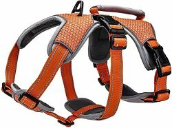 Belpro Multi-use Support Dog Harness Escape Proof No Pull Reflective Adjustable