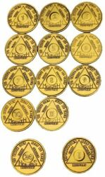 Set Of Aa Month Medallions Months 1 - 11 1 Year And 24 Hours Sobriety Chips