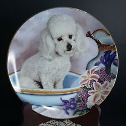 Bathing Beauty Entitled Poodle Collection Plate By Danbury Mint