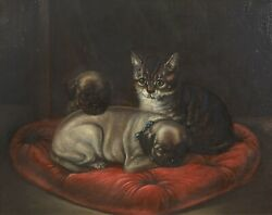19th Century English School Portrait Of A Cat And Pug Puppy Dogs Antique Painting