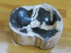 Indonesian Petrified Wood Fossil Cut And Polished Into Bowl Dish 8.4lbs 8.5x8x2.5