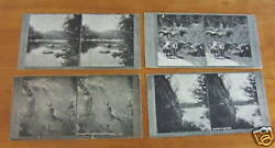 Lot Of 4 F G Radcliffe New Zealand Graphic Series Stereoviews