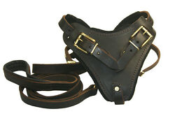Dean And Tyler The Boss Leather Dog Harness And Matching Soft Touch 6and039 Leash Combo