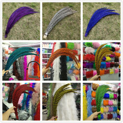 Precious 10-100pcs Beautiful Lady Amherst Pheasant Feather 32-36 Inch/80-90 Cm