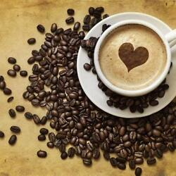 Jamaican Tropical Island Rum Flavored Coffee Beans Worlds Best Micro Roasted