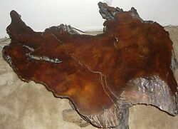 Antique Old Growth Redwood Burl Wood Coffee Table Collectible Vintage Furniture