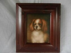 SMALL BREED CANINE DOG PORTRAIT CAVALIER KING CHARLES SPANIEL OC MUST SEE