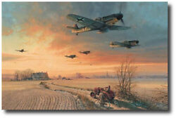 The Long Short Days Col. A/p By Robert Taylor- Bf109g - Nine Pilot Signatures