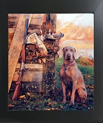 Wild Weimaraner Dog Hunting Animal Wall Decor Contemporary Black Framed Picture