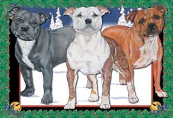 Staffordshire Bull Terrier Staffie Dog Christmas Cards Set of 10 cards