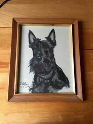 Vintage 1940's Scottish Terrier Scottie Dog Framed Print Gladys Emerson Cook