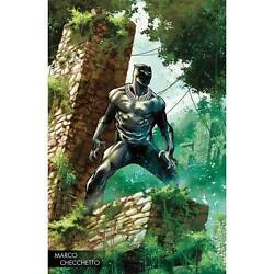 Black Panther 170 Marco Checcetto Young Guns Variant- Nm/m -marvel Legacy