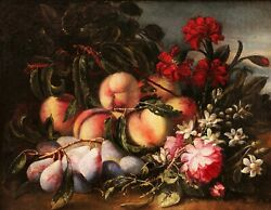 Old Master Painting Still Life Fruits School Italian 1800 Peaches Plums Flowers