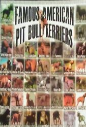 Famous American Pit Bull Terrier Paperback Book