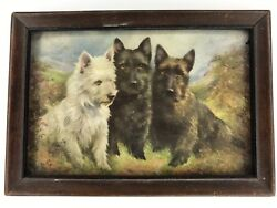 Lilian Cheviot Westie Dog Art Print Framed Vtg Antique Primitive Decor Terrier