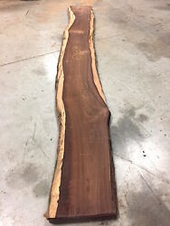 Cocobolo Rosewood Exotic Wood Lumber Slab 1 X 10 To 13 X 115, Kd