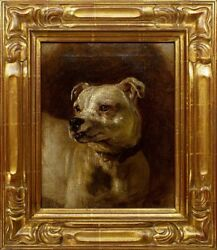 ANTIQUE 1800's ORIGINAL OIL PAINTING OF STAFFORDSHIRE TERRIER OR PIT BULL DOG