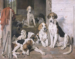 John Emms Foxhounds And Terrier In A Stable Print 11 X 14 5217