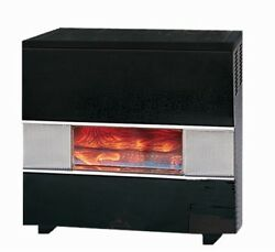 Williams 35000 BTU Natural Gas Hearth Heater with Wall or Cabinet-Mounted