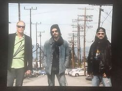 Winery Dogs Billy Sheehan Signed 8x10 Autograph Namm
