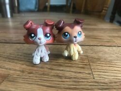 Littlest Pet Shop Authentic Collies