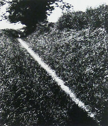 Bill Brandt Pilgrim's Way, England, 1950 / Silver Print-printed Later / Signed
