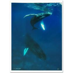Wyland Mother And Calf Led Art Nature Photograph, Numb And Hand Siged. Coa. New
