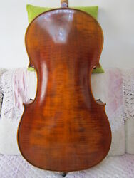 Cello Flame Maple Spruce 4/4 Bag Bow Rosin Master Level Hand Carve