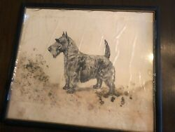 Marguerite Kirmse  VERY RARE ' Scottish Terrier Original Etching Print Signed