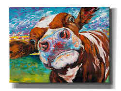 Epic Graffiti And039curious Cow Iand039 By Carolee Vitaletti Giclee Canvas Wall Art