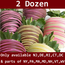 2 Dozen Chocolate Strawberries W Spring Drizzle W Delivery Date Select