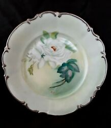 Vintage Hutschenreuther Bavaria Hand Painted Porcelain Plate White Rose 10.25