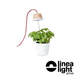 Linea Light Chlorophyll Bulb Led Lamp From Floor Or Hanging For Growing
