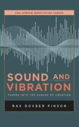 Sound And Vibration Tuning Into The Echoes Of Creation