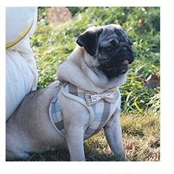 Cute Dog Harness amp; Leash Mesh Padded Dog amp; Cat Walking Vest for Small Large Dogs