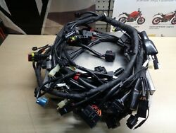 Ducati Multistrada And0392013-2015and039 Electric Wiring Harness 51018681b