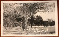East Entrance To Nmmi Roswell New Mexico Rppc Azo