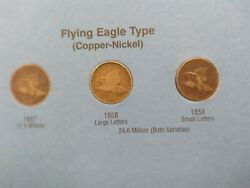 1857-1909 Indian Head W/ Flying Eagle Cents Collection Set 43 Coins
