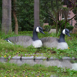 Fake Hunting Goose Drake Duck Snow Goose Home Garden Decor Pond Ornament